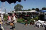 Fischmarkt Niendorfer Hafen am 01. Juni